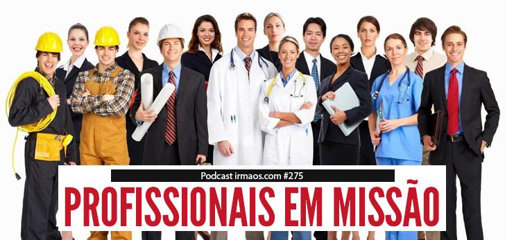 Profissionais em missão noirmaos.com